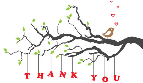Thank you for Supporting our Online Auction!