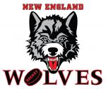 JOIN US! EASTERN HOCKEY LEAGUE BENEFIT GAME AS THE NE WOLVES HOST THE CT ROUGHRIDERS!